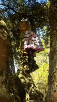 Madisyn at my sister Harrietts house climbing the tree. For such a girly girl she can be a tom boy too!