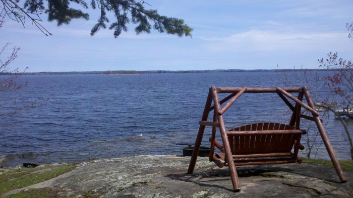moose lake swing