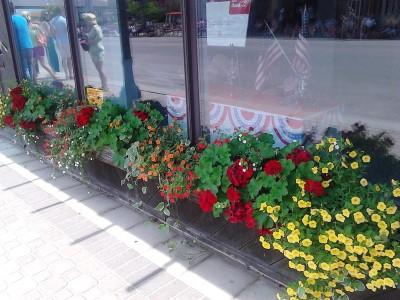 i day parade store front flowers