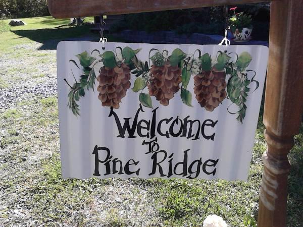 a pine ridge 4