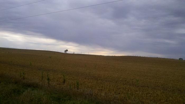 fc corn fields with turbines