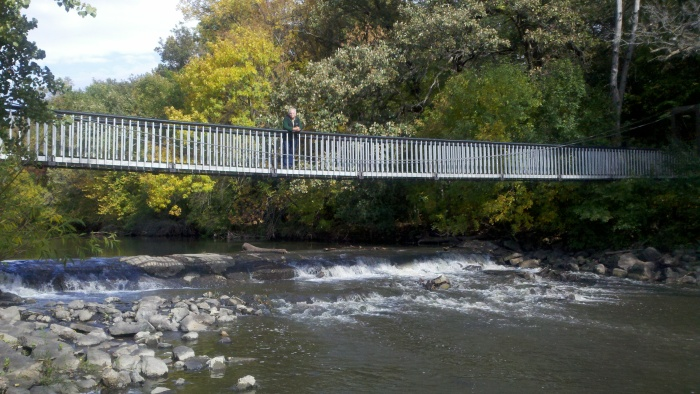 fc roy on bridge