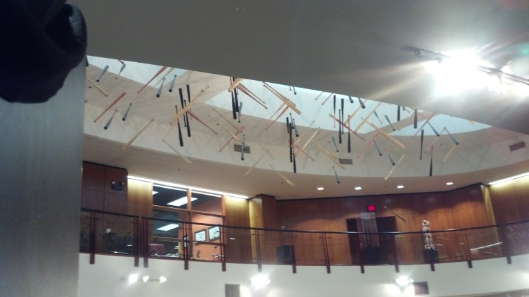 bats hung from ceiling