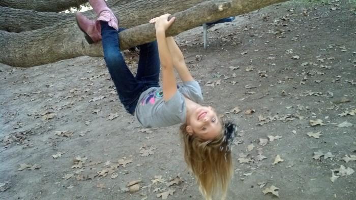 madisyn tree hanging