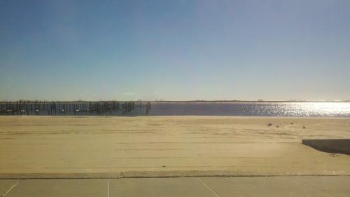 beach no pier