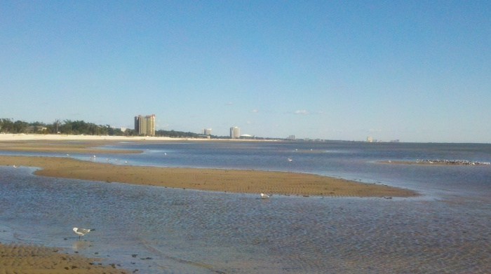 dune water shore