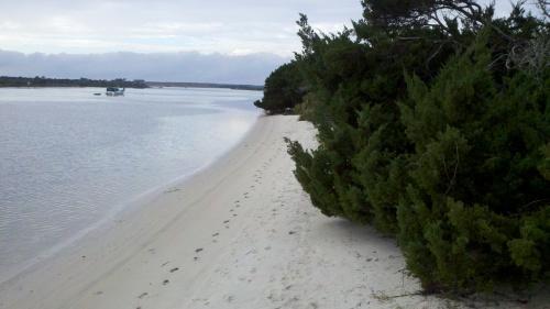 sa beach bush