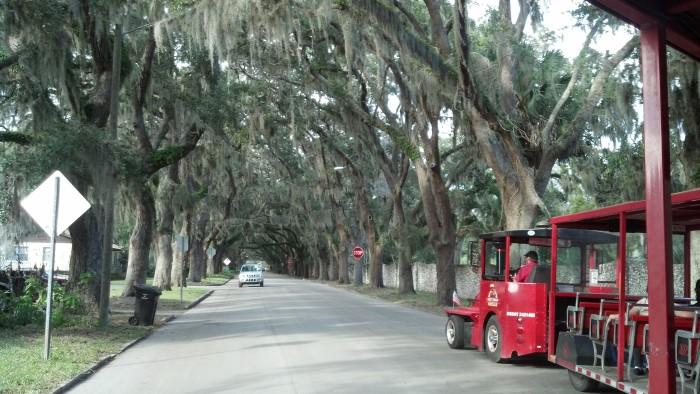 sa magnolia street