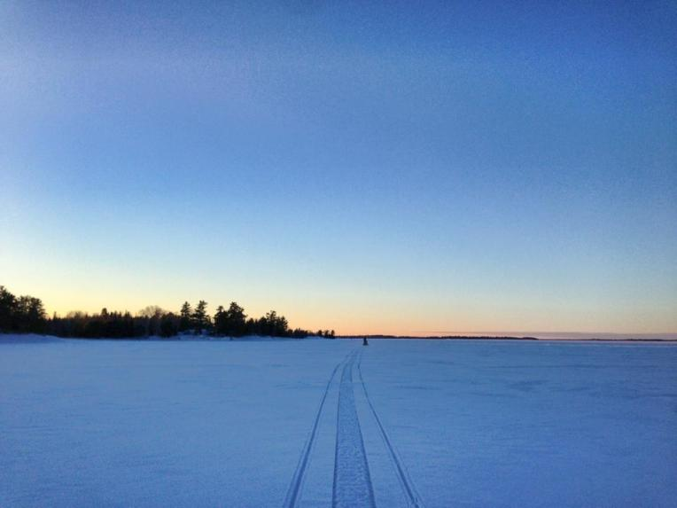 nlro winter2
