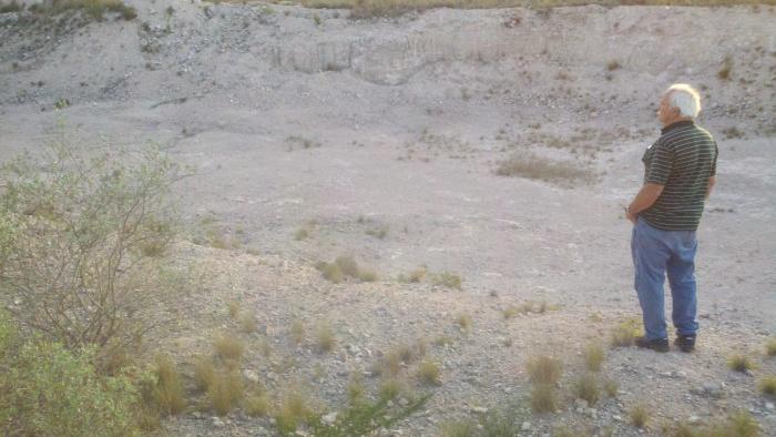 pit roy
