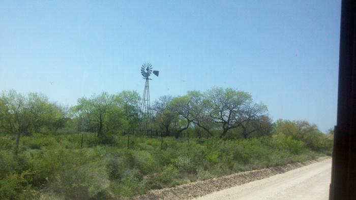 windmill crippled trees