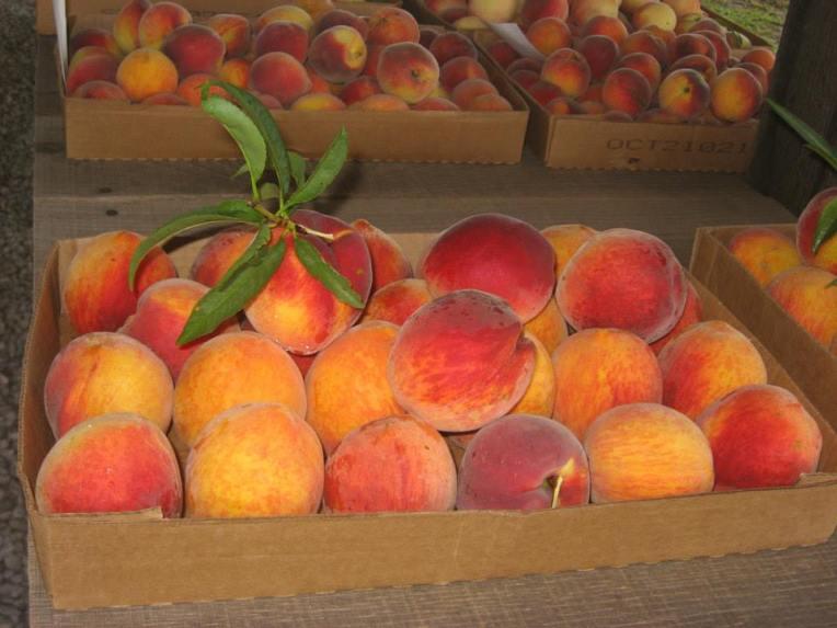 one box peaches