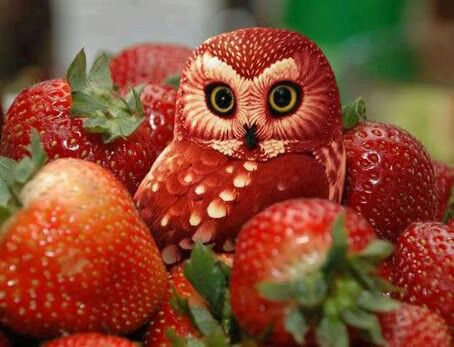 a strawverry