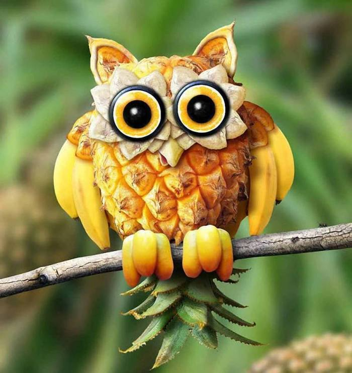 banana pineapple owl without words