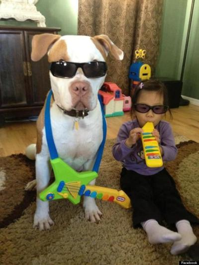 why babies need dogs pic