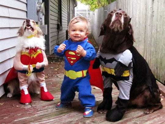 why babies need dogs pic2