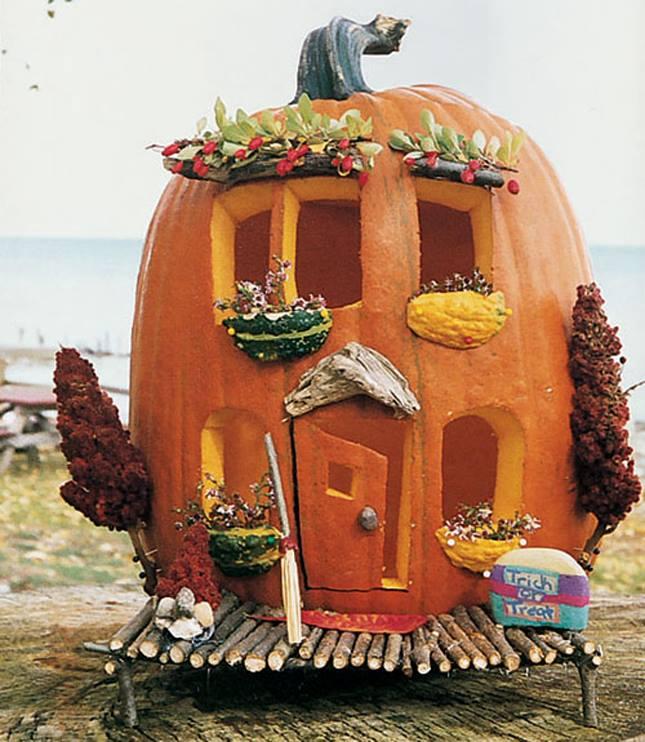 fav pics 16 pumpkin