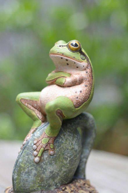 froggie chillin