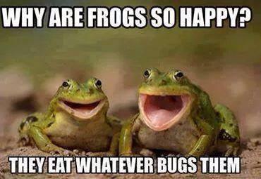 froggies add tghis one