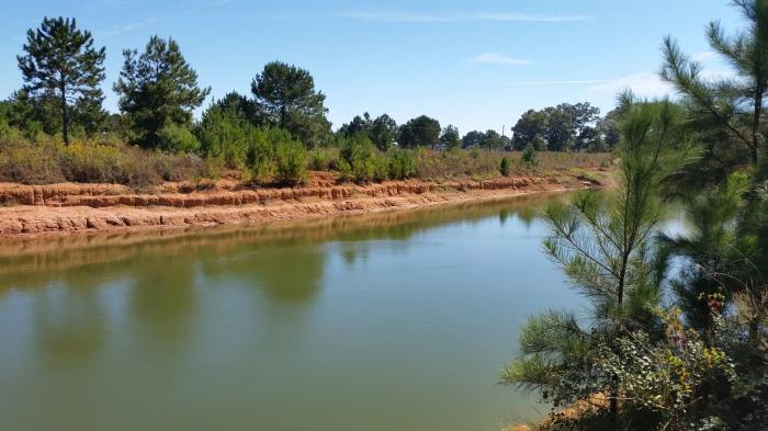 pond behind property