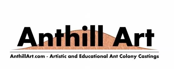 ant hill art