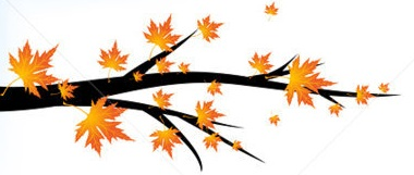 autum branch with falling leaves divider