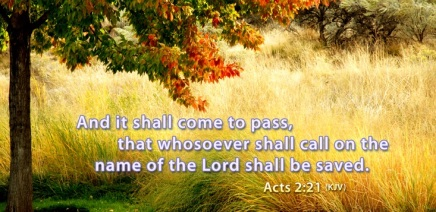 acts 2 21