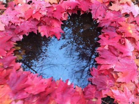 VALENTINES leaves
