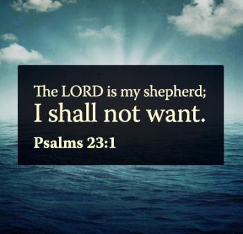 psalms 23 11