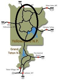 yellowstone figure 8 loop