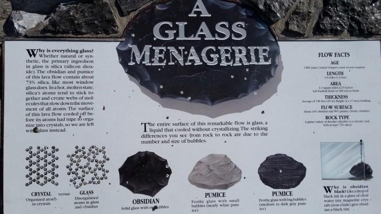 a glass menagerie (Medium)