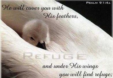 psalm 91 4a
