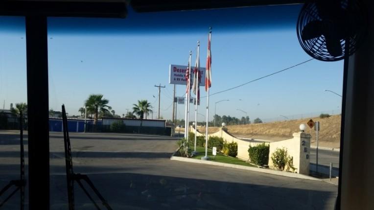 desert palms in bakersfield 3 (Small)