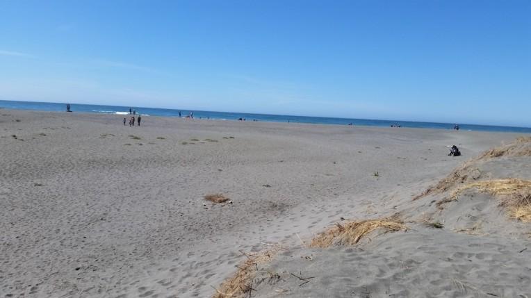 oi beach 1 (Medium)