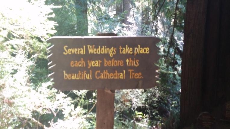 tm19 wedding sign