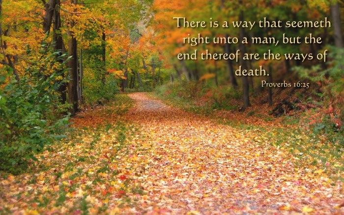 Proverbs-16.25